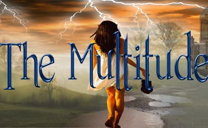 The Multitude